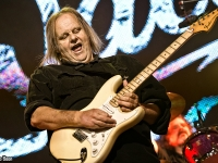 Walter Trout R&B2017 26-9091
